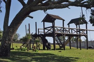 banana-beach-holiday-resort-south-coast-resort-pics-jungle-gym